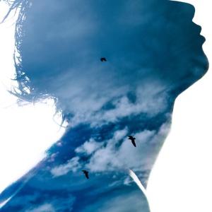Stocksy-Birds-Clouds-Luca-Pierro